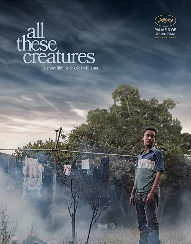 All These Creature_indieactivity