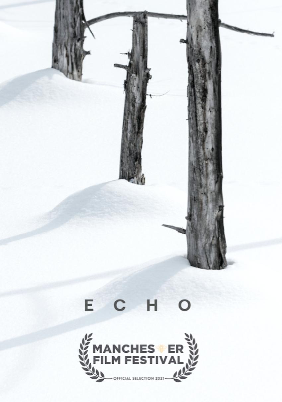 ECHO_indieactivity